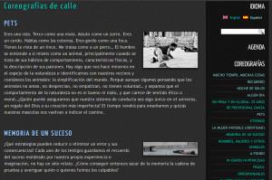 Captura de pantalla provisionaldanza.com